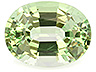 Tsavorite Single Oval Slightly included